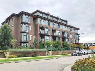 Main Photo: 208 262 SALTER Street in New Westminster: Queensborough Condo for sale : MLS®# R2337231