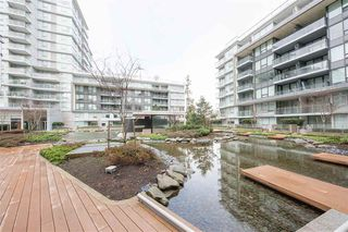 Photo 12: 301 3233 KETCHESON Road in Richmond: West Cambie Condo for sale : MLS®# R2354856