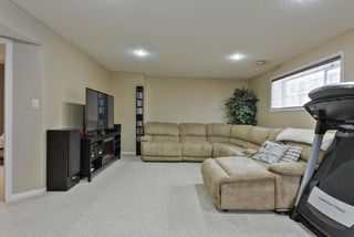 Photo 21: 10 HANEY Court: Spruce Grove House for sale : MLS®# E4155570