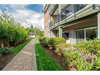 "Photo 18: 112 8183 121A Street in Surrey: Queen Mary Park Surrey Condo for sale in ""Celeste"" : MLS®# R2404463"