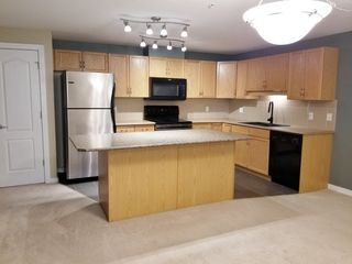 Photo 7: 201 278 SUDER GREENS Drive in Edmonton: Zone 58 Condo for sale : MLS®# E4178308