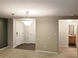 Photo 4: 201 278 SUDER GREENS Drive in Edmonton: Zone 58 Condo for sale : MLS®# E4178308