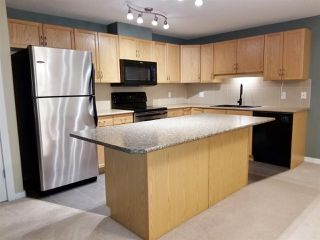 Photo 5: 201 278 SUDER GREENS Drive in Edmonton: Zone 58 Condo for sale : MLS®# E4178308