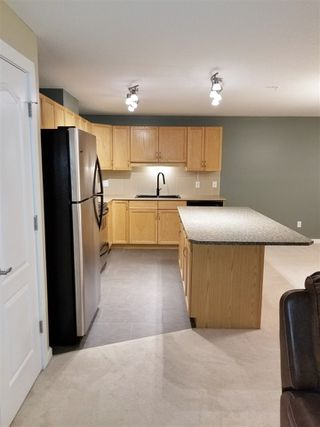 Photo 6: 201 278 SUDER GREENS Drive in Edmonton: Zone 58 Condo for sale : MLS®# E4178308