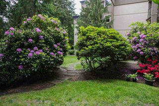 "Photo 13: 104A 2615 JANE Street in Port Coquitlam: Central Pt Coquitlam Condo for sale in ""BURLEIGH GREEN"" : MLS®# R2460355"