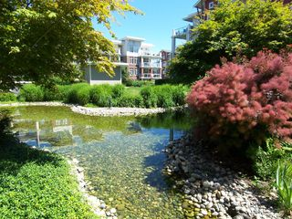Photo 20: #106 - 4211 Bayview St. in Richmond: Steveston South Condo for sale : MLS®# V1008368