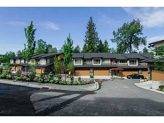"Photo 19: 8 23986 104 Avenue in Maple Ridge: Albion Townhouse for sale in ""SPENCER BROOK"" : MLS®# V1066745"
