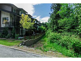 "Photo 17: 8 23986 104 Avenue in Maple Ridge: Albion Townhouse for sale in ""SPENCER BROOK"" : MLS®# V1066745"