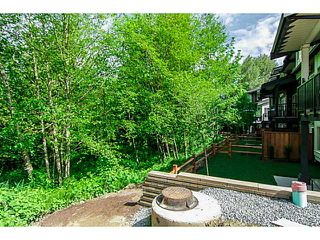 "Photo 18: 8 23986 104 Avenue in Maple Ridge: Albion Townhouse for sale in ""SPENCER BROOK"" : MLS®# V1066745"