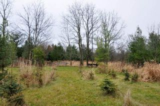 Photo 8: 3420 Cedar Springs Road in Burlington: Rural Burlington House (Bungalow-Raised) for sale : MLS®# W3072593