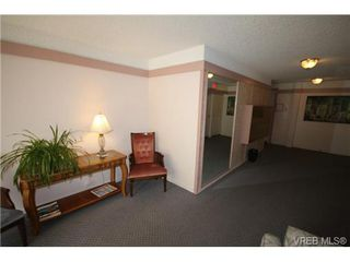 Photo 6: 205 1050 Park Blvd in VICTORIA: Vi Fairfield West Condo for sale (Victoria)  : MLS®# 702718