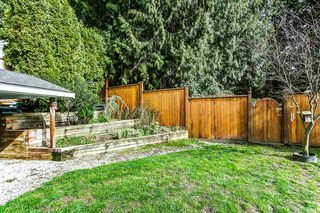 Photo 14: 11266 HARRISON Street in Maple Ridge: East Central House for sale : MLS®# R2049258