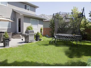 Photo 39: 67 CHAPMAN Way SE in Calgary: Chaparral House for sale : MLS®# C4065212