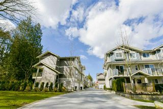Photo 20: 21 6383 140 Street in Surrey: Sullivan Station Townhouse for sale : MLS®# R2152595