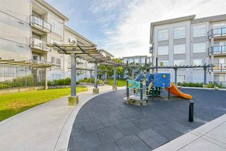 "Photo 20: 528 13789 107A Avenue in Surrey: Whalley Condo for sale in ""Quattro"" (North Surrey)  : MLS®# R2174671"