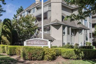 """Photo 17: 201 3183 ESMOND Avenue in Burnaby: Central BN Condo for sale in """"The Winchelsea"""" (Burnaby North)  : MLS®# R2206570"""