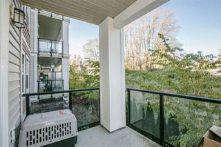 Photo 17: 206 11580 223 STREET in Maple Ridge: West Central Condo for sale : MLS®# R2220633