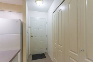 "Photo 14: 208 3455 ASCOT Place in Vancouver: Collingwood VE Condo for sale in ""QUEENS COURT"" (Vancouver East)  : MLS®# R2268064"