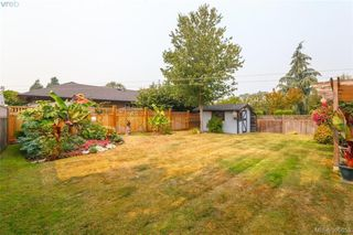 Photo 30: 4164 Beckwith Pl in VICTORIA: SE Lake Hill Single Family Detached for sale (Saanich East)  : MLS®# 797392