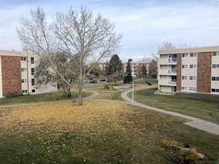 Main Photo: 42 11245 31 Avenue in Edmonton: Zone 16 Condo for sale : MLS®# E4131735