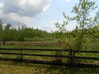 Photo 28: : Rural Westlock County House for sale : MLS®# E4132166