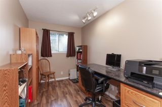 Photo 13: 20557 114 Avenue in Maple Ridge: Southwest Maple Ridge House for sale : MLS®# R2327151