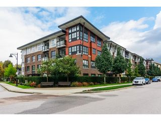 "Main Photo: 211 23215 BILLY BROWN Road in Langley: Fort Langley Condo for sale in ""WATERFRONT AT BEDFORD LANDING"" : MLS®# R2331731"