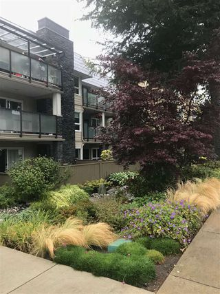 """Main Photo: 202 1371 FOSTER Street: White Rock Condo for sale in """"KENT MANOR"""" (South Surrey White Rock)  : MLS®# R2335451"""