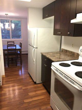 Photo 12: 307 11026 106 Street in Edmonton: Zone 08 Condo for sale : MLS®# E4145809