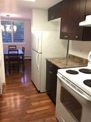 Photo 14: 307 11026 106 Street in Edmonton: Zone 08 Condo for sale : MLS®# E4145809