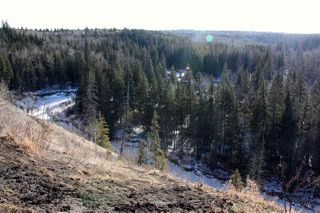 Photo 15: 4142 Aspen Drive in Edmonton: Zone 16 House for sale : MLS®# E4149789