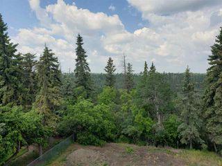 Photo 10: 4142 Aspen Drive in Edmonton: Zone 16 House for sale : MLS®# E4149789