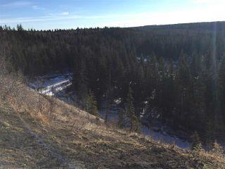 Photo 16: 4142 Aspen Drive in Edmonton: Zone 16 House for sale : MLS®# E4149789