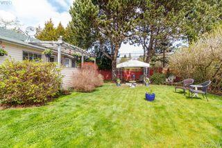 Photo 15: D 7885 West Coast Rd in SOOKE: Sk Kemp Lake Single Family Detached for sale (Sooke)  : MLS®# 811342