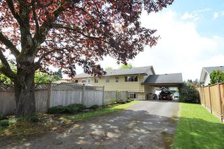 Photo 20: 11686 HOLLY Street in Maple Ridge: West Central House for sale : MLS®# R2364760