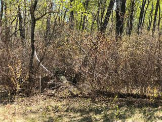 Photo 4: 17 Moon Shadow Drive: Lake Manitoba Narrows Residential for sale (R19)  : MLS®# 1916202