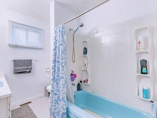 Photo 12: 21103 WICKLUND Avenue in Maple Ridge: Northwest Maple Ridge House for sale : MLS®# R2399871