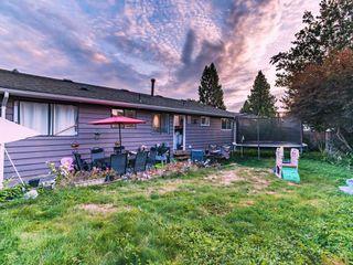 Photo 19: 21103 WICKLUND Avenue in Maple Ridge: Northwest Maple Ridge House for sale : MLS®# R2399871