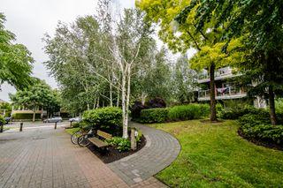 Photo 20: 221 5700 Andrews Road in Richmond: Steveston South Condo for sale