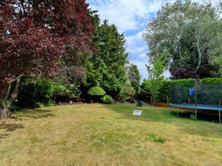 Photo 21: 982 Nicholson St in : SE Lake Hill Single Family Detached for sale (Saanich East)  : MLS®# 850751