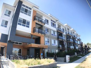 Main Photo: 326 4690 HAWK Lane in Tsawwassen: Tsawwassen North Condo for sale : MLS®# R2483683