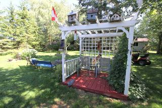 Photo 3: 50 Robinson Avenue in Kawartha Lakes: Rural Eldon House (Bungalow-Raised) for sale : MLS®# X4869770