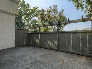 Photo 16: 17 4061 Larchwood Dr in : SE Lambrick Park Row/Townhouse for sale (Saanich East)  : MLS®# 855304