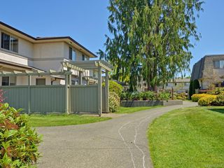 Photo 19: 17 4061 Larchwood Dr in : SE Lambrick Park Row/Townhouse for sale (Saanich East)  : MLS®# 855304