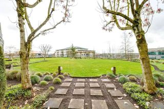 Photo 19: 117 6336 197 STREET in Langley: Willoughby Heights Condo for sale : MLS®# R2518688