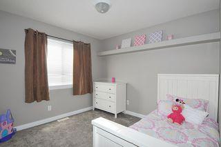 Photo 10: 24190 103 Avenue in Maple Ridge: Albion House for sale : MLS®# R2034937