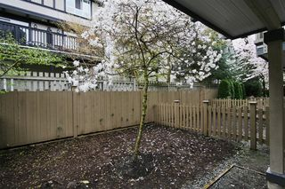 "Photo 19: 53 6651 203 Street in Langley: Willoughby Heights Townhouse for sale in ""SUNSCAPE"" : MLS®# R2049263"