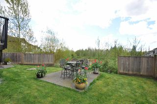 Photo 19: 22852 TELOSKY Avenue in Maple Ridge: East Central House for sale : MLS®# R2160767