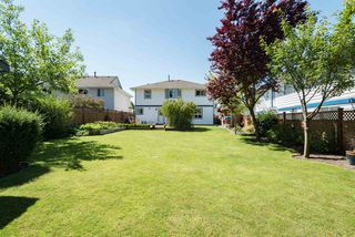 """Photo 4: 22225 47 Avenue in Langley: Murrayville House for sale in """"MURRAYVILLE"""" : MLS®# R2184794"""