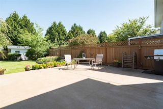 """Photo 5: 22225 47 Avenue in Langley: Murrayville House for sale in """"MURRAYVILLE"""" : MLS®# R2184794"""